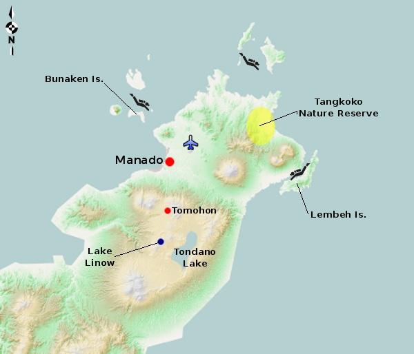 Manado and bunaken dive travel guide | bluewater dive travel.